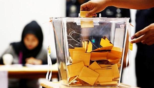 Malasia: Ciudadanos empiezan a votar en las elecciones generales hinh anh 1