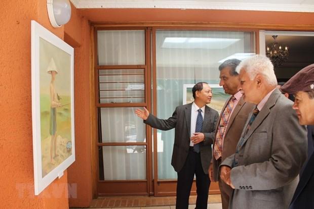 En Sudafrica muestra de pinturas sobre zonas costeras de Vietnam hinh anh 1