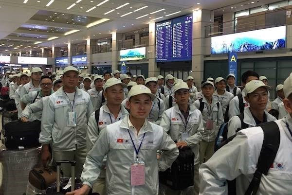Sudcorea contratara siete mil 900 trabajadores vietnamitas en 2018 hinh anh 1
