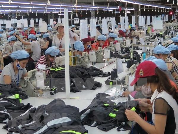 Industria de confecciones, segunda fuente de divisas para Vietnam hinh anh 1