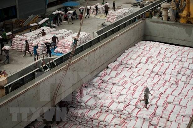 Buenas senales para la exportacion de arroz de Vietnam hinh anh 1