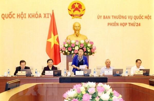 Comite Permanente de la Asamblea Nacional de Vietnam analiza informe del Gobierno hinh anh 1
