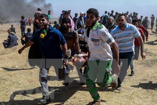Vietnam expresa su preocupacion por la escalada del conflicto en Gaza hinh anh 1