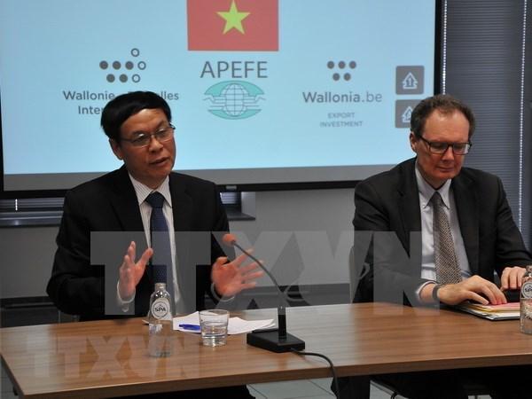Promueven cooperacion entre Vietnam y region Valona-Bruselas de Belgica hinh anh 1