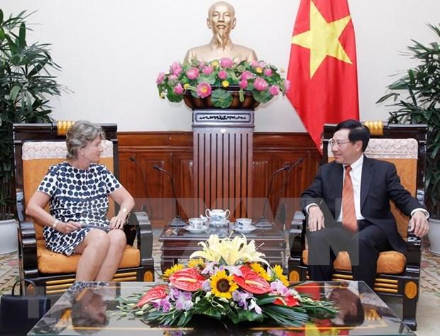 Vicepremier y canciller de Vietnam satisfecho con desarrollo de asociacion estrategica con Espana hinh anh 1