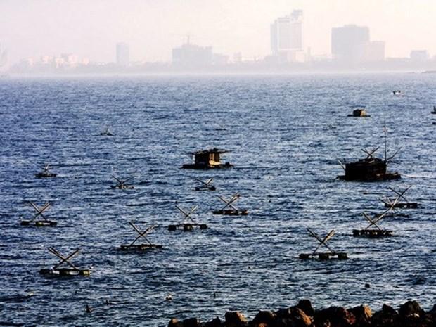 Provincias centrovietnamitas se recuperan tras dos anos de incidente ambiental hinh anh 1