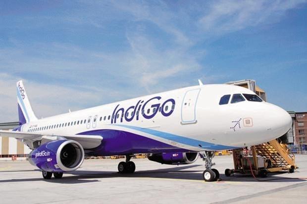 La mayor aerolinea de la India planea una nueva ruta a Vietnam hinh anh 1
