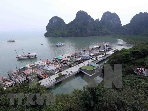 Vietnam lanzara campana de limpieza de playas en zonas centrales hinh anh 1