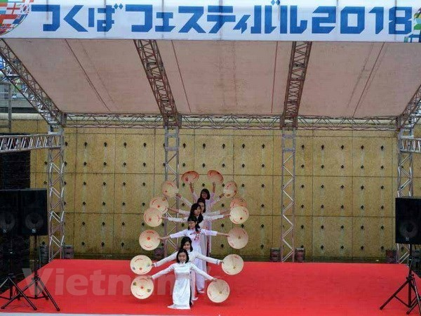 Destacan particularidades culturales de Vietnam en festival en Japon hinh anh 1