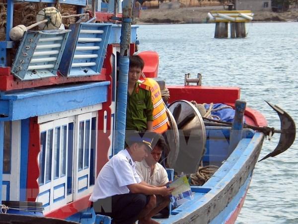 Ciudad vietnamita de Da Nang refuerza lucha contra la pesca ilegal hinh anh 1