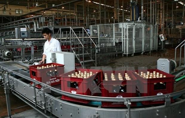 Vietnam apunta obtener 900 millones de dolares de exportaciones de bebidas hinh anh 1
