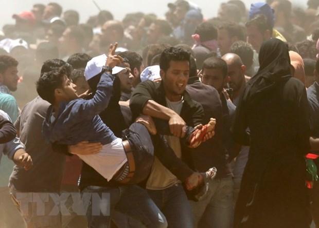 Vietnam expresa condolencia a Palestina por perdidas humanas durante enfrentamiento en Gaza hinh anh 1