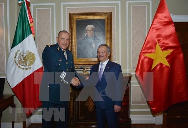 Vietnam, un ejemplo global de defensa de la Patria y la construccion nacional hinh anh 1