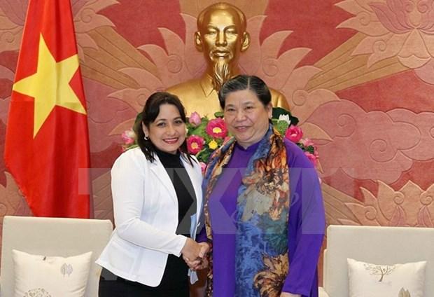 Vicepresidenta del Parlamento de Vietnam resalta cooperacion juvenil con Cuba hinh anh 1
