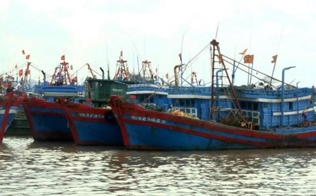 Vietnam y China realizan negociaciones sobre cooperacion en el mar hinh anh 1