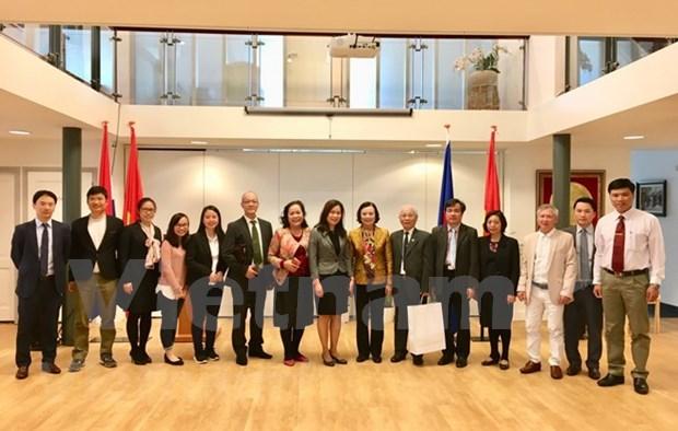 Delegacion vietnamita para la movilizacion de masas visita Holanda hinh anh 1