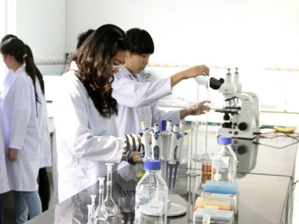 Vietnamitas ganan premios en Concurso Internacional de Ciencias e Ingenieria ISEF 2018 hinh anh 1