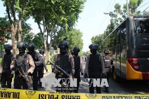 Educacion ideologica es clave para la lucha antiterrorista, segun experto indonesio hinh anh 1