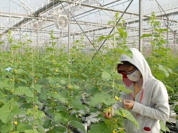 Sudcorea y provincia survietnamita firman acuerdo sobre uso de bioproductos hinh anh 1