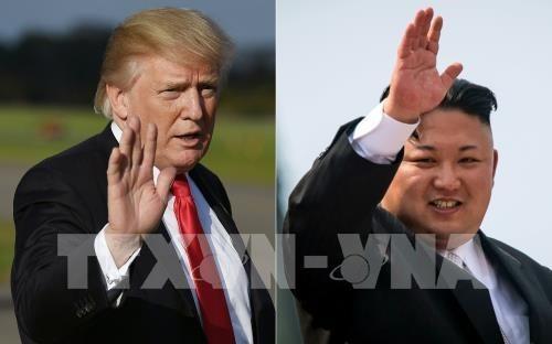 Japon y Singapur acuerdan cooperacion en cumbre Trump- Kim hinh anh 1