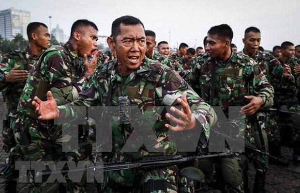Indonesia considera crear una fuerza especial contra terrorismo hinh anh 1