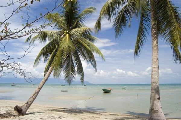 Playas vietnamitas entre los mejores lugares para vacacionistas, segun Thrillist hinh anh 1