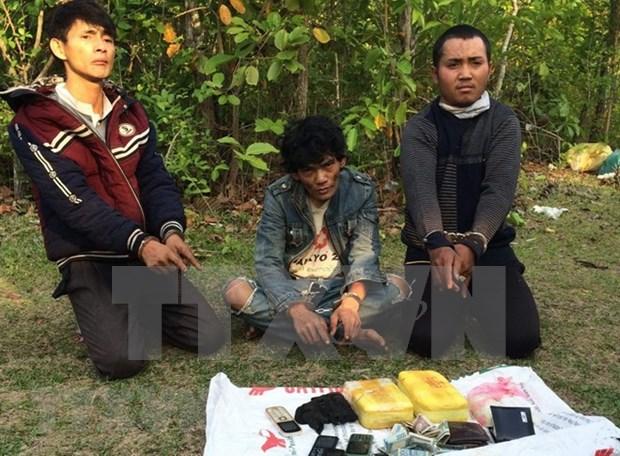 Vietnam desplegara mes de accion contra las drogas en junio hinh anh 1