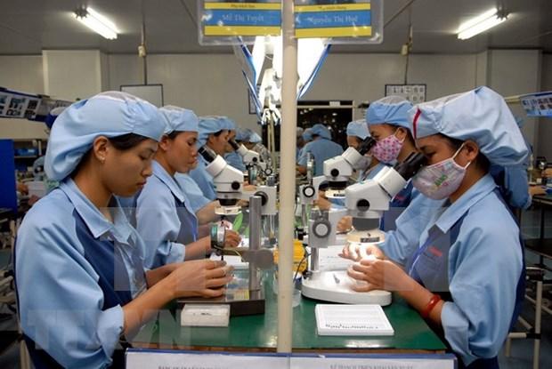 Provincia vietnamita proyecta enviar mil trabajadores al exterior hinh anh 1