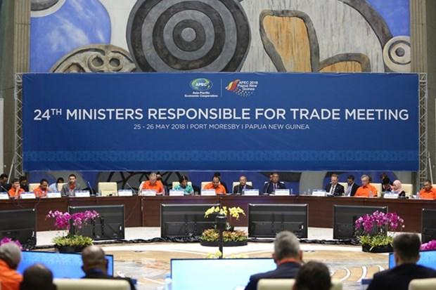 Ministros de Comercio de APEC no logran acuerdo de sistema de comercio multilateral hinh anh 1