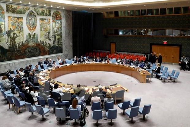 Vietnam, unico representante de Asia-Pacifico para candidatura al Consejo de Seguridad de la ONU hinh anh 1