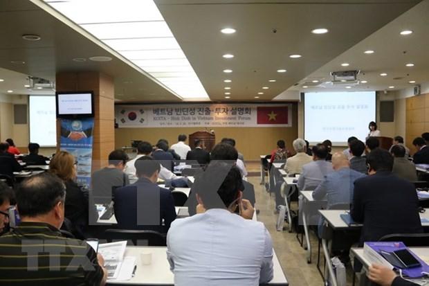 Provincia vietnamita de Binh Dinh lanza alfombra roja para inversores de Corea del Sur hinh anh 1