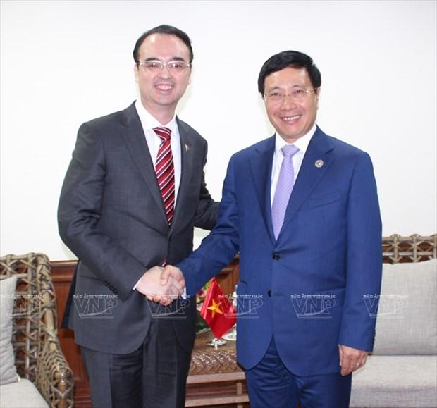 Vicepremier y canciller vietnamita se reune con ministro de Asuntos Exteriores de Japon hinh anh 1