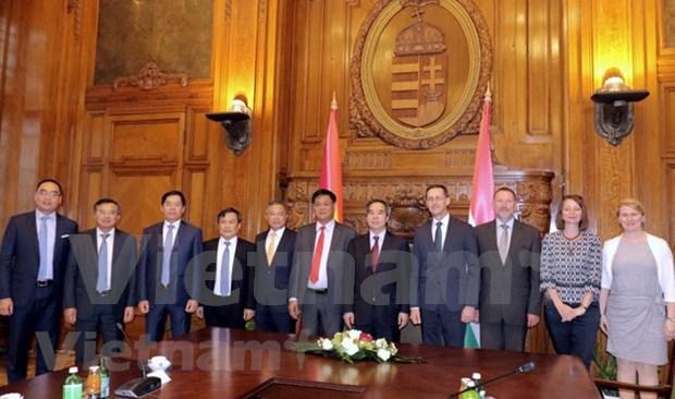 Vietnam y Hungria promueven lazos de cooperacion economica hinh anh 1