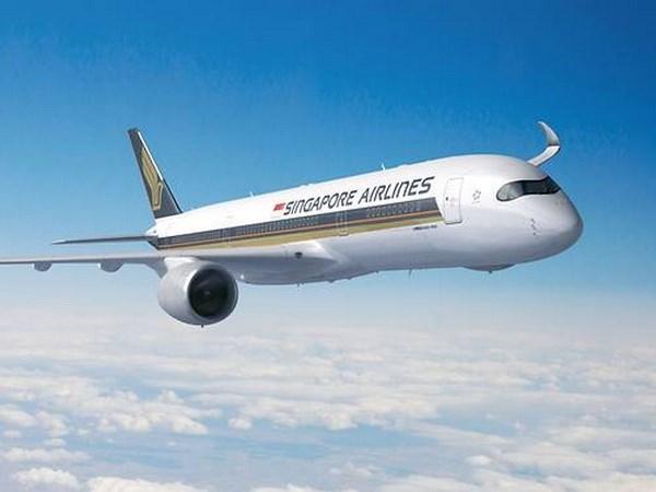 Aerolinea de Singapur inaugurara la ruta comercial mas larga del mundo hinh anh 1