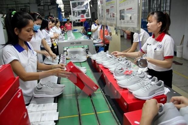 Valor de exportacion en Ciudad Ho Chi Minh aumenta 15,7 por ciento en cinco meses hinh anh 1