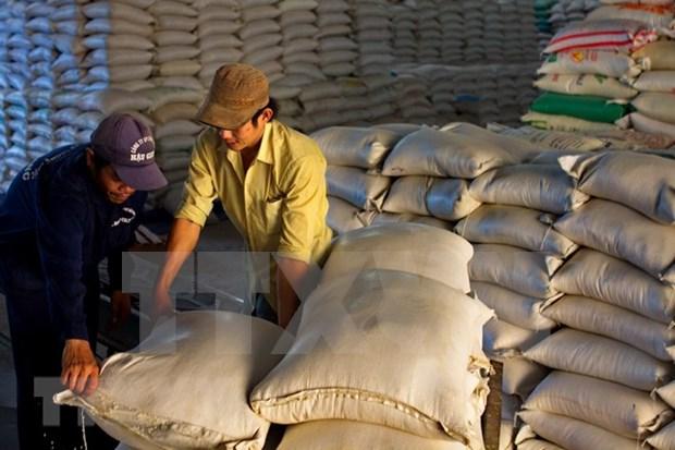 Vietnam gana contrato de exportacion de arroz a Corea del Sur hinh anh 1