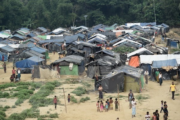 Myanmar dispuesto a recibir a musulmanes rohingyas que huyeron a Bangladesh hinh anh 1
