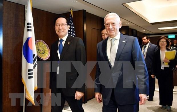 Dialogo de Shangri- La 2018: EE.UU. no aliviara sanciones contra Corea del Norte hasta la desnuclearizacion hinh anh 1