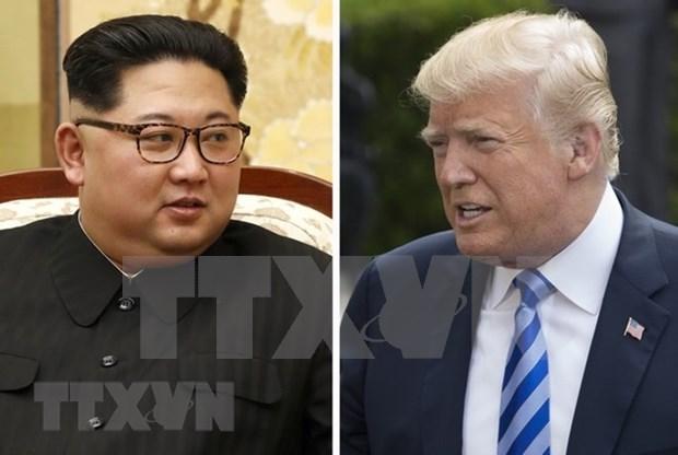 Corea del Sur y Japon enviaran funcionarios a proxima cumbre Trump- Kim hinh anh 1
