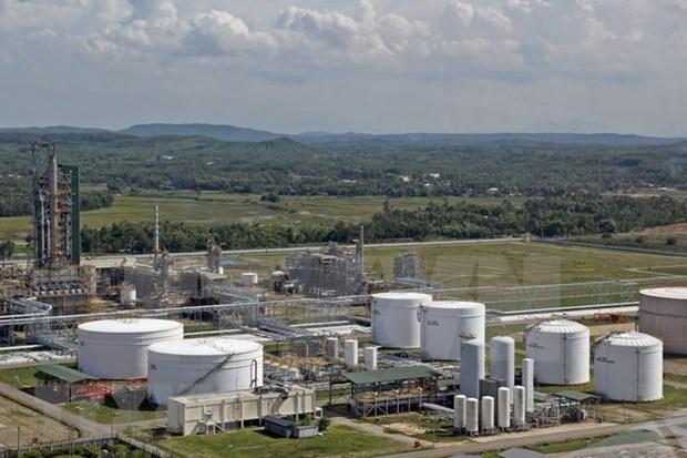 Refineria petrolera de Dung Quat entre plantas mas verdes de Vietnam hinh anh 1