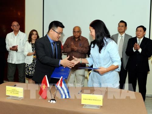 Empresas de Vietnam y Cuba firman acuerdos comerciales hinh anh 1