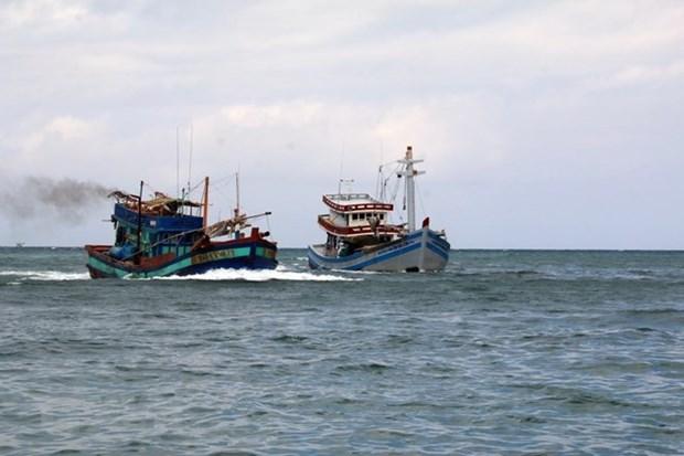 Indonesia llama a colaboracion internacional para frenar la pesca ilegal hinh anh 1
