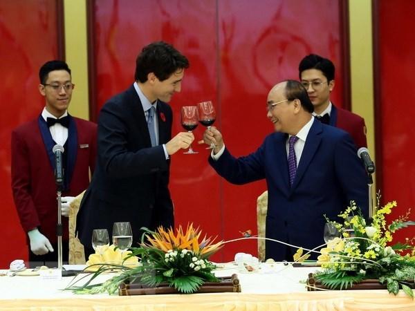 Funcionario canadiense confia en perspectiva de cooperacion con Vietnam hinh anh 1