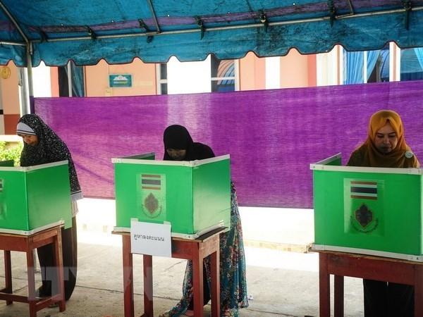 Tailandia: elecciones generales seguiran estrictamente los procedimientos legales hinh anh 1