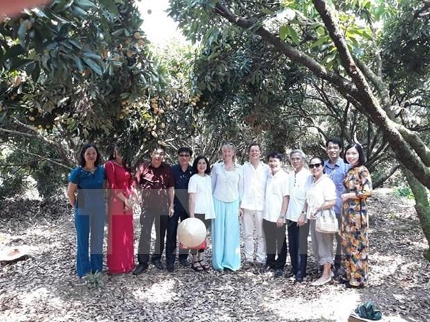 Embajador suizo aprecia calidad de lichi vietnamita Thanh Ha hinh anh 1