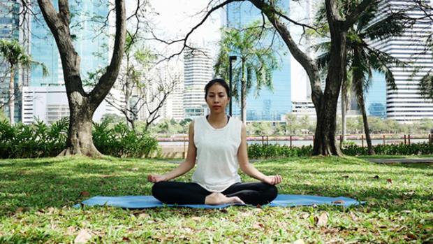 Celebraran en Vietnam Dia Internacional del Yoga hinh anh 1