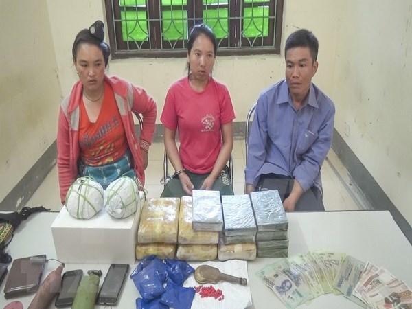 Desmantelan red de trafico de drogas en frontera Vietnam-Laos hinh anh 1
