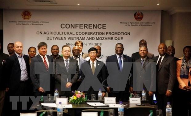 Mozambique resalta cooperacion agricola con Vietnam hinh anh 1