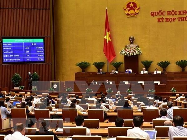 Ley de Ciberseguridad de Vietnam no interfiere actividades de empresas y pobladores, afirma especialista hinh anh 1