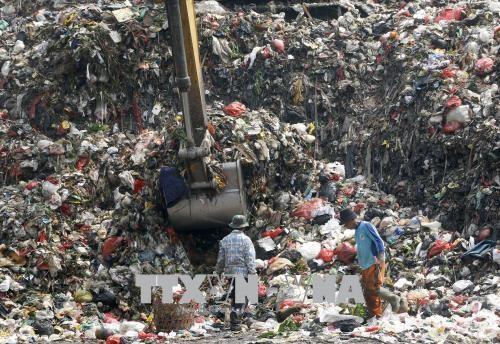 Decidida Indonesia a acelerar reciclaje de residuos plasticos hinh anh 1